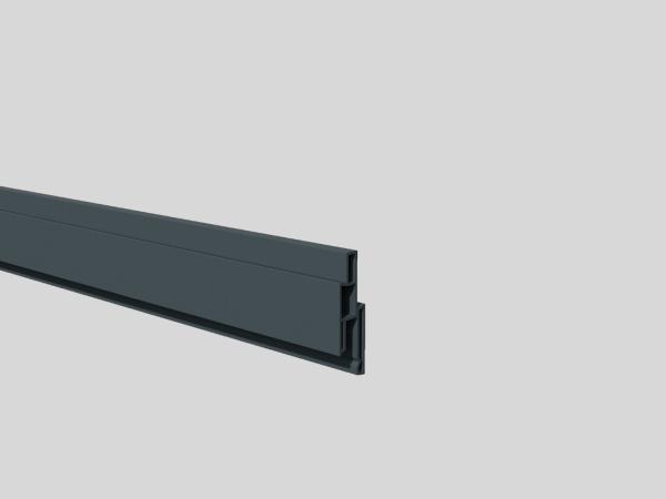 Nut-Profil 25 mm, 1,4 x 2, 5 cm, Länge 180 cm Anthrazit